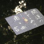 【パワースポット】不思議な恋占いに人気殺到【島根県・松江市 八重垣神社】