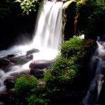 【パワースポット】驚く程の名水で心身清浄【福井県,三方上中郡,瓜割の滝 福井】
