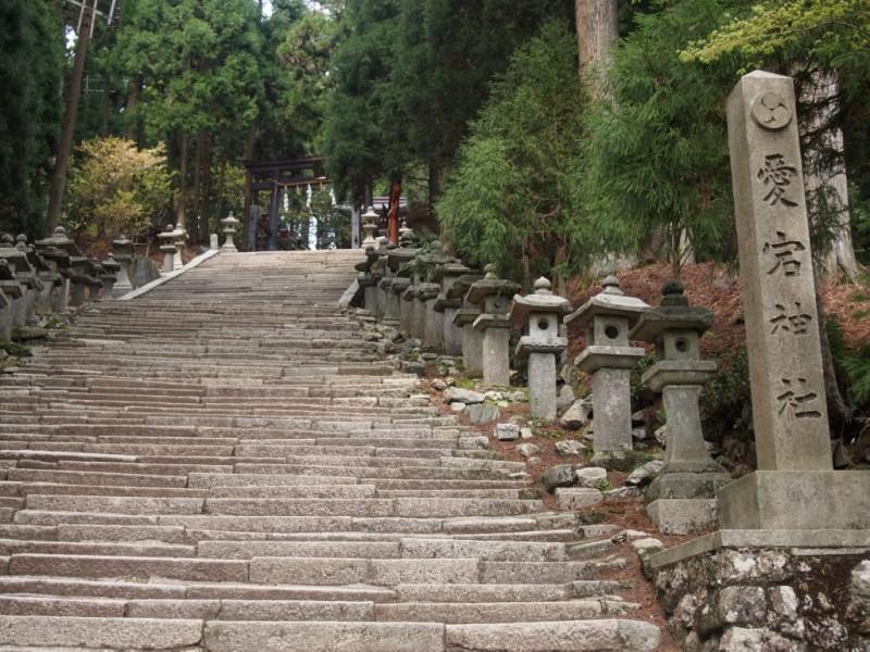 「愛宕山は港区」の画像検索結果