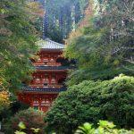 【パワースポット】2つの浄土を再現したありがたいスポット【京都府・木津川市 浄瑠璃寺】