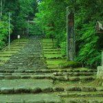 【パワースポット】美しい森に抱かれた究極の癒やし【福井県県,勝山市,平泉寺白山神社】
