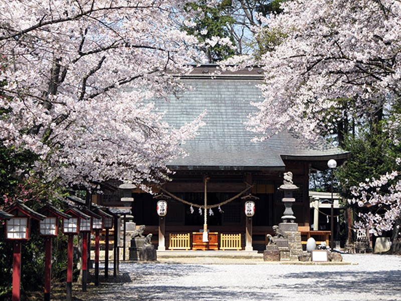 washinomiya00