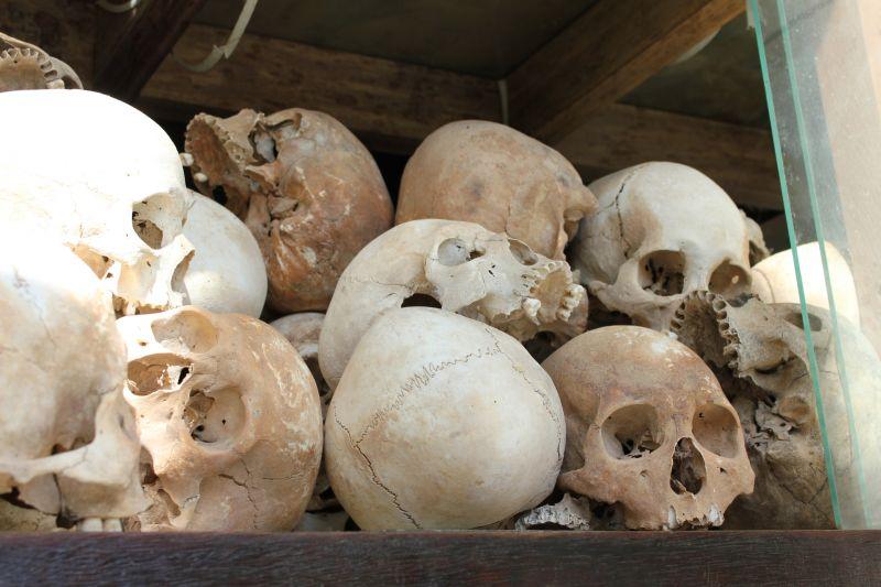 骸骨の画像 p1_32