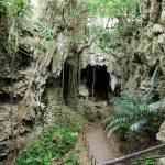 【パワースポット】精霊が宿ると言う自然豊かな神秘の谷【沖縄県,南城市,ガンガラーの谷】