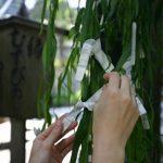 【パワースポット】バレンタインデー前に行っておきたい!恋愛成就の柳!【京都府,京都市,六角堂の柳】