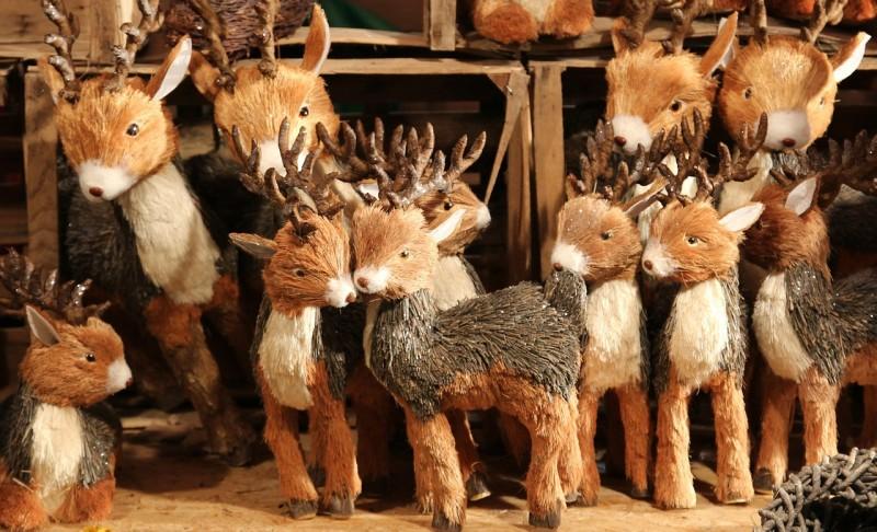 deer-561293_1280