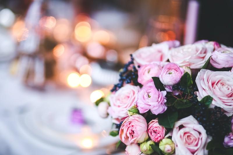 flower-791140_1280