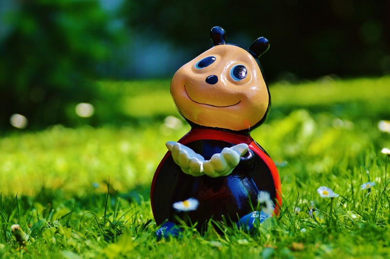 ladybug-800896_1280