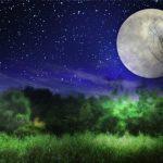ただ眺めているだけじゃもったいない、満月の夜に運気を上げる方法