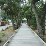 三保の松原の「神の道」を歩いて神聖なパワーを浴びてリフレッシュしよう