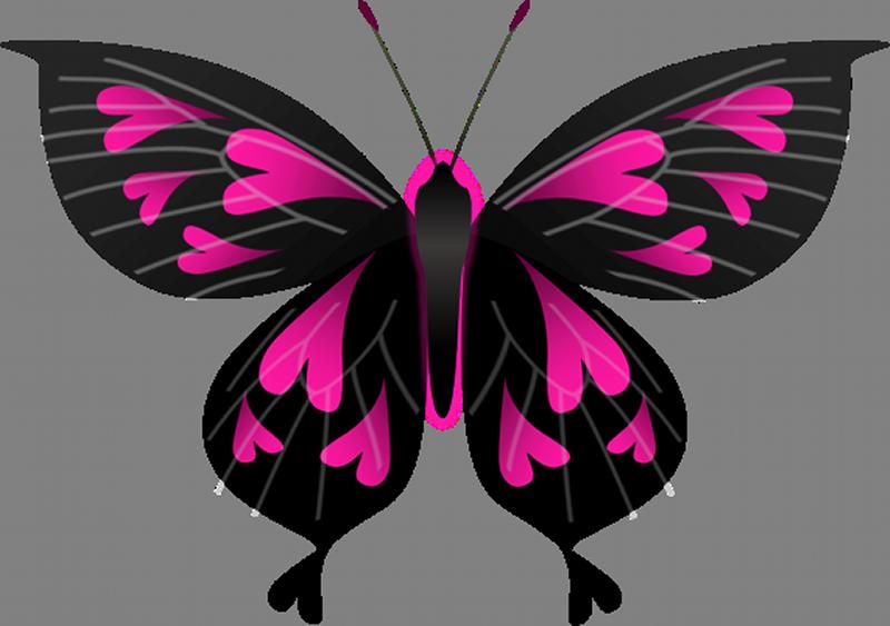 heart-butterfly001