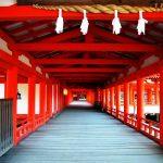 【開運】神社でお願いごとを叶えてもらう時の作用・基礎知識